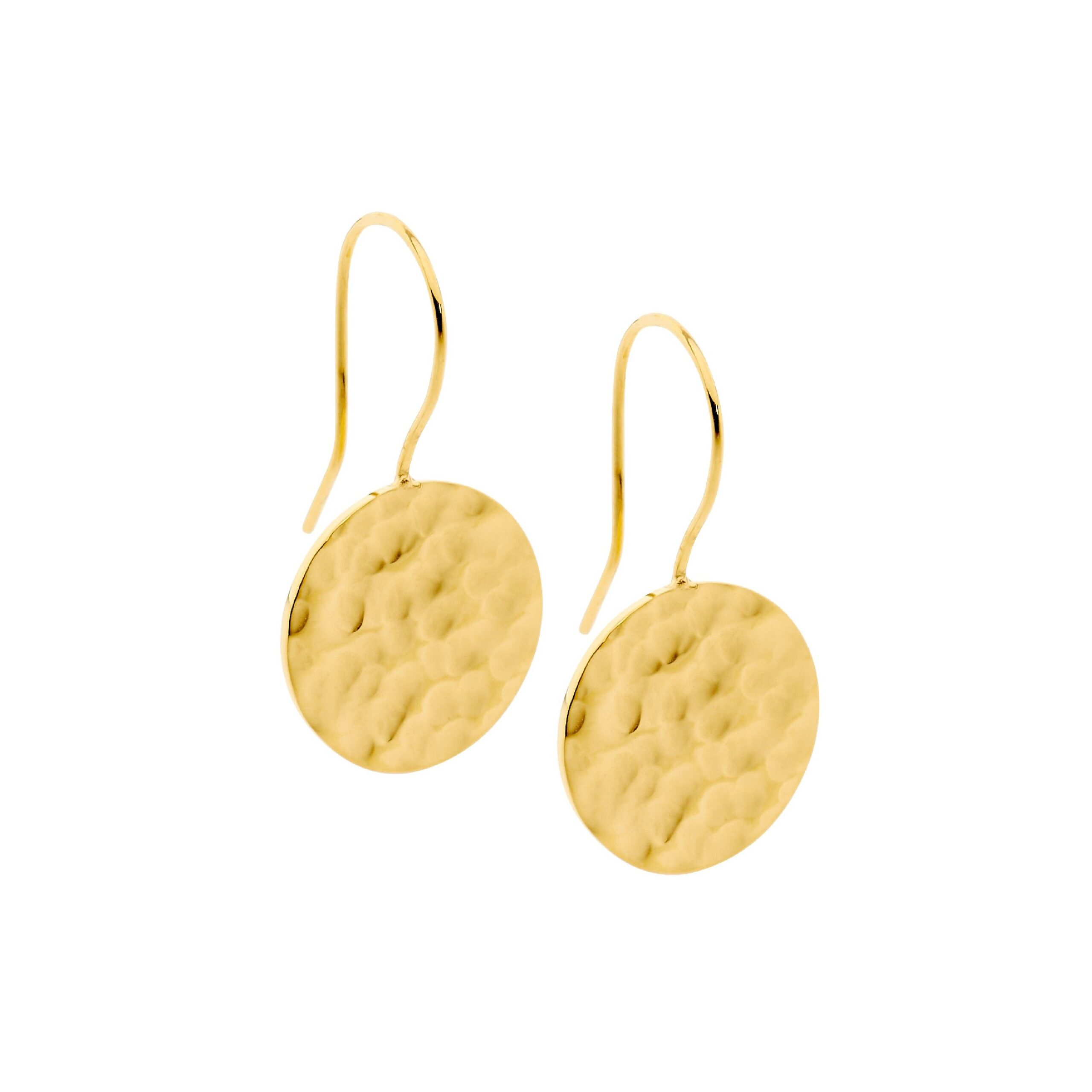 Ellani Stainless Steel IP-Gold Earring